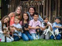 la familia y el amor animal
