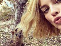 selfie en el bosque con animales