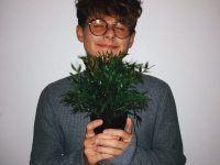 con una planta