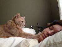 despertando a su ama
