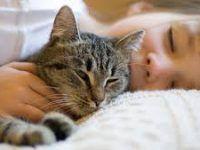 durmiendo a su lado