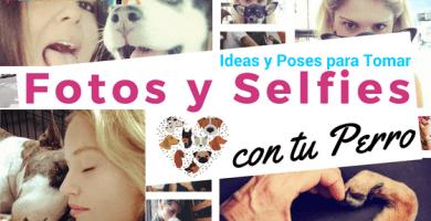 ideas para tomarte fotos con tu perro